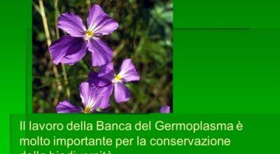 Biodiversità e conservazione del germoplasma