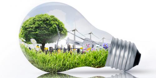 Filiera Foresta-Legno e Biocombustibili